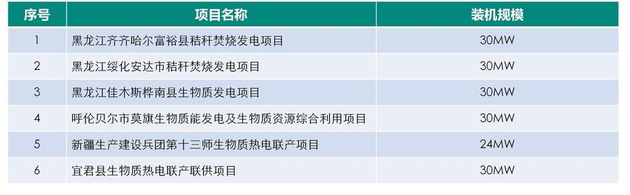 生物质发电项目业绩表.jpg