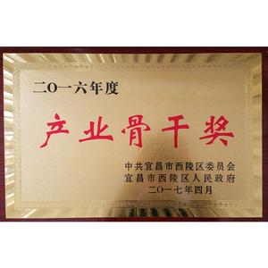 2016産業骨幹獎