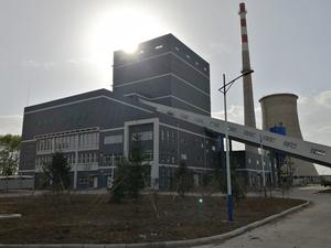 富裕縣綠能生物質發電項目